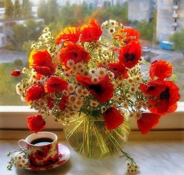 Exceptionnel bouquets de fleurs TO37